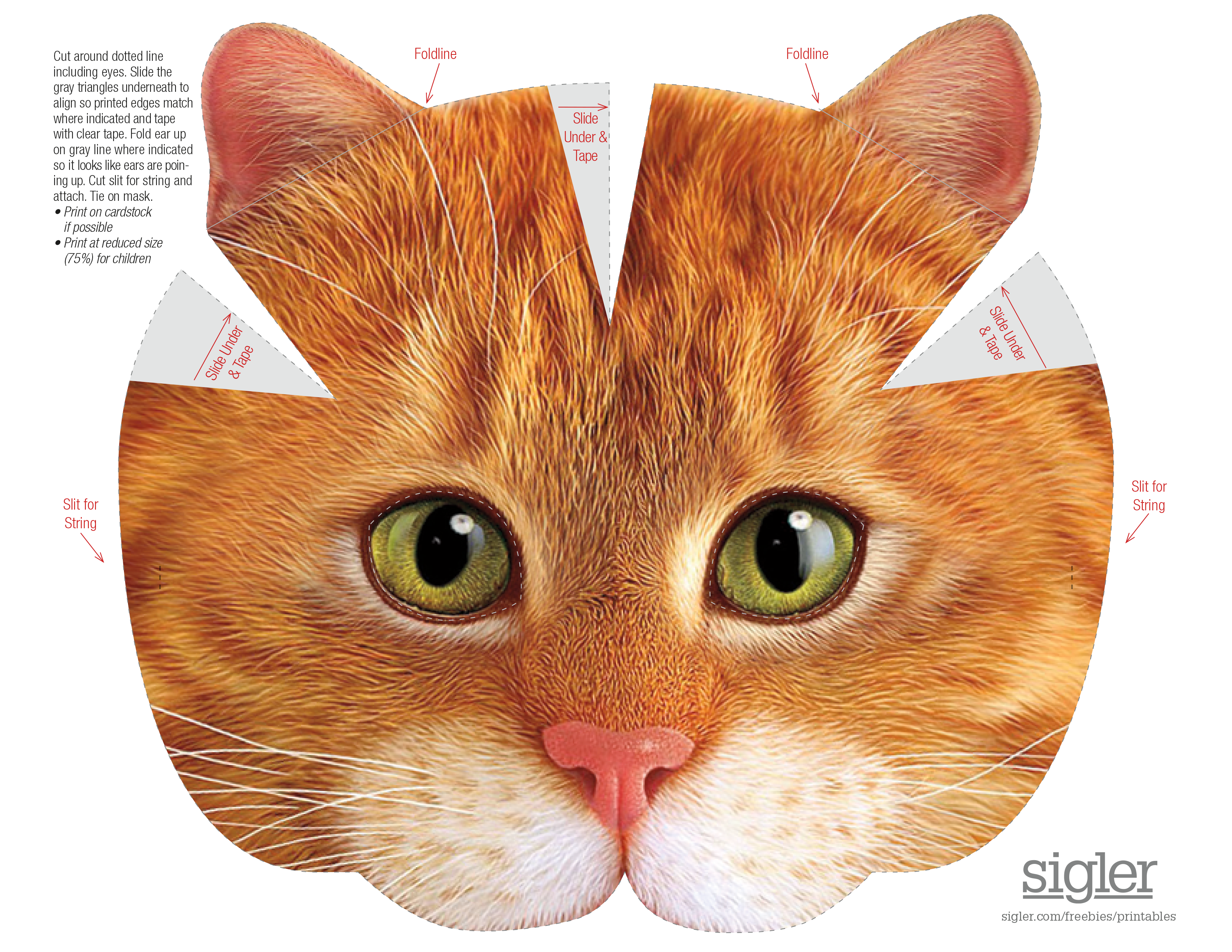 picture about Cat Mask Printable referred to as Hairy Good friends Cat Mask Sigler